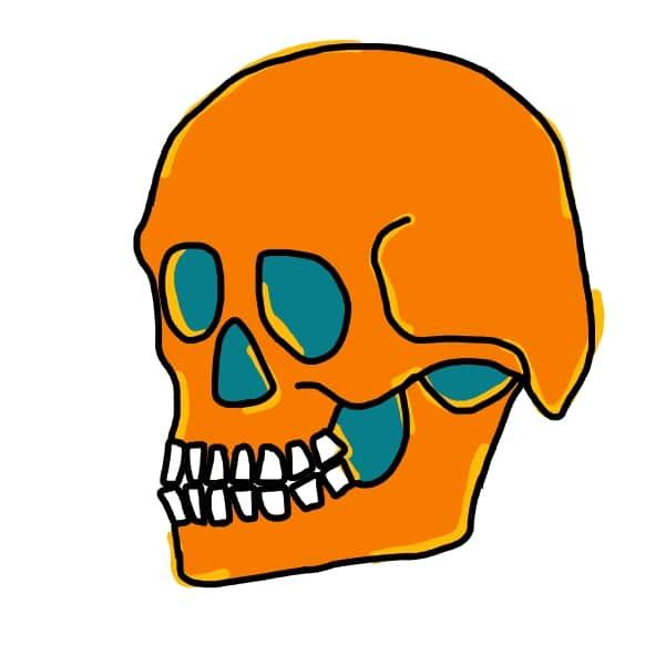 Crâne - Voyages en archéo